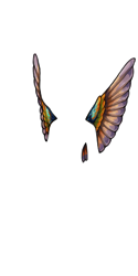 Iridescent Hummingbird Feathers