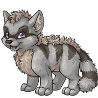 silver terracoon